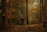 Фильм Странная жизнь Тимоти Грина / The Odd Life of Timothy Green (2012) - cцена 3