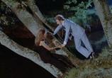 Сцена из фильма Рассеянный / Le distrait (1970) Рассеянный сцена 5
