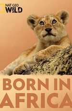 Рожденные в Африке. Школа выживания