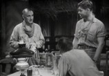 Сцена из фильма Красная пыль / Red Dust (1932)