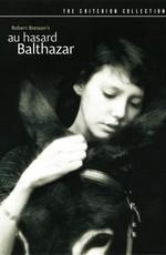 Наудачу, Бальтазар