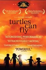 И черепахи умеют летать