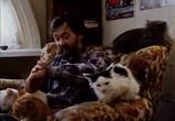 Сцена из фильма Котёнок (1996) Котёнок сцена 7