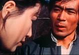 Фильм Леди вихрь / Tie zhang xuan feng tui (1972) - cцена 2