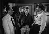 Сцена из фильма Чемпион / Champion (1949) Чемпион сцена 1