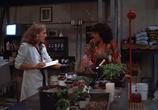 Сцена из фильма Болотная тварь / Swamp Thing (1982)