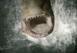 Фильм Акульи плотины / Dam Sharks (2016) - cцена 2
