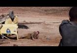 Сцена из фильма Пять пальцев для Марселя / Five Fingers for Marseilles (2017) Пять пальцев для Марселя сцена 1