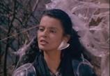 Сцена из фильма Феникс-воин / Phoenix the Warrior (1988) Феникс-воин сцена 3