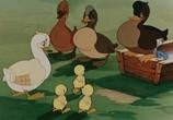 Сцена из фильма Сборник мультфильмов: Именины сердца-5 (1954) Сборник мультфильмов: Именины сердца - 5 DVDRip сцена 66