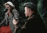Сцена из фильма Случай в тайге (1953) Случай в тайге сцена 2