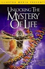 Раскрывая тайны происхождения жизни