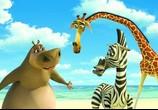 Сцена из фильма Мадагаскар / Madagascar (2005) Мадагаскар
