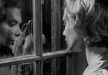 Сцена из фильма Поцелуй убийцы / Killer's Kiss (1955) Поцелуй убийцы сцена 7