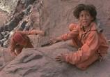 Сцена из фильма Клад / Holes (2003) Клад сцена 5