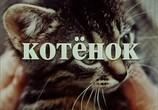 Сцена из фильма Котёнок (1996) Котёнок сцена 2