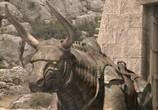 Сцена из фильма Язон и аргонавты / Jason and the Argonauts (2000) Язон и аргонавты сцена 5