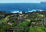 Сцена из фильма Морские гиганты Азорских островов / Giants of the Atlantic Azores (2016) Морские гиганты Азорских островов сцена 3