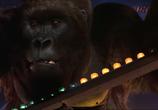 Сцена из фильма Могучий Джо Янг / Mighty Joe Young (1998) Могучий Джо Янг сцена 8