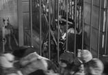 Фильм Повесть о двух городах / A Tale of Two Cities (1935) - cцена 1