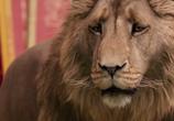 Сцена из фильма Хроники Нарнии: Лев, Колдунья и Волшебный Шкаф / The Chronicles of Narnia: The Lion, the Witch and the Wardrobe (2005)