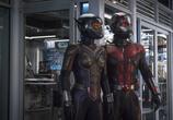 Сцена из фильма Человек-муравей и Оса / Ant-Man and the Wasp (2018)