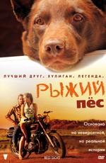 Рыжий пес / Red Dog (2011)