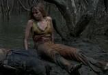 Сцена из фильма Хищные воды / Black Water (2007) Хищные воды сцена 4
