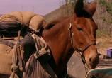 Фильм Почтальон / The Postman (1997) - cцена 1