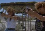 Сцена из фильма Тельма и Луиза / Thelma & Louise (1991) Тельма и Луиза сцена 7