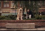 Сцена из фильма Хатико: Самый верный друг / Hachiko: A Dog's Story (2009) Хатико: Самый верный друг сцена 6