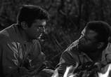 Фильм Не склонившие головы / The Defiant Ones (1958) - cцена 2