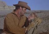 Сцена из фильма Дуэль в Диабло / Duel at Diablo (1966) Дуэль в Диабло сцена 2
