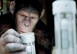 Сцена из фильма Восстание планеты обезьян / Rise of the Planet of the Apes (2011)