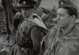 Сцена из фильма Король Шумавы / Kral Sumavy (1959)