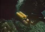 Сцена из фильма Орлиный остров (1961)