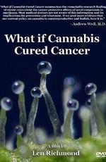 Что если марихуана лечила бы рак