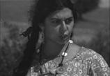 Сцена из фильма Последний табор (1935)