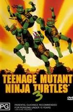 Черепашки мутанты ниндзя 3 / Teenage Mutant Ninja Turtles III (1993)