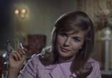 Сцена из фильма Мистер Питкин: Из лучших побуждений (Ограниченный временем) / Press for Time (1966) Мистер Питкин: Из лучших побуждений сцена 5
