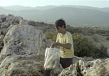 Сцена из фильма Зайтун / Zaytoun (2012) Зайтун сцена 6