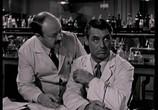 Сцена из фильма Обезьяньи проделки / Monkey Business (1952) Обезьяньи проделки сцена 2