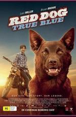 Рыжий: вся правда / Red Dog: True Blue (2016)