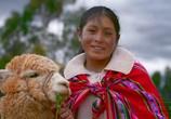ТВ Перу / Peru (2017) - cцена 5