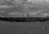 Сцена из фильма Акула-Франкенштейн / Sharkenstein (2016) Акула-Франкенштейн сцена 3