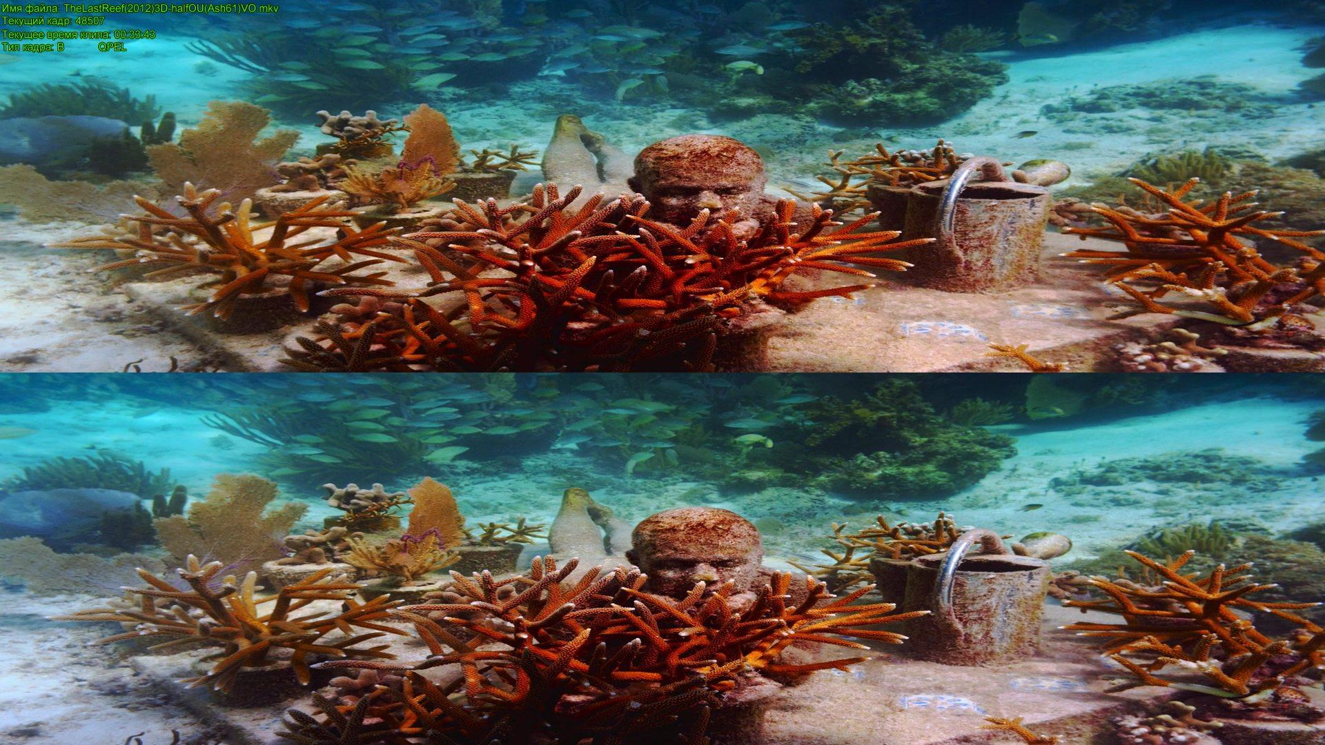 Последний риф 3d / the last reef 3d ( by ash61) вертикальная.