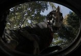 Кадр из фильма Терра Нова торрент 69268 кадр 2