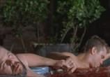Сцена из фильма Самоубийцы: История любви / Wristcutters: A Love Story (2006) Самоубийцы: История любви сцена 7