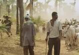 Сцена из фильма Самба Траоре / Samba Traoré (1992) Самба Траоре сцена 10