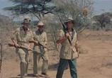 Сцена из фильма Сафари / Safari (1956) Сафари сцена 3